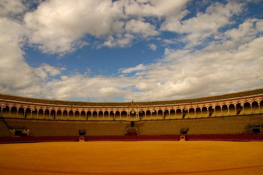 Plaza de la Maestranza- Ejemplo de Albero de Sevilla