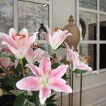 Hall & Flowers Luxury Apartment