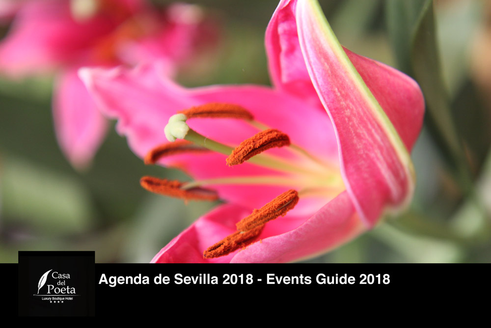 events guide seville 2018